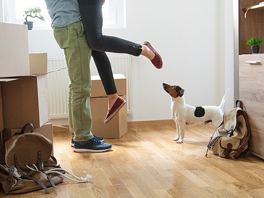 Local NJ Moving With Pets